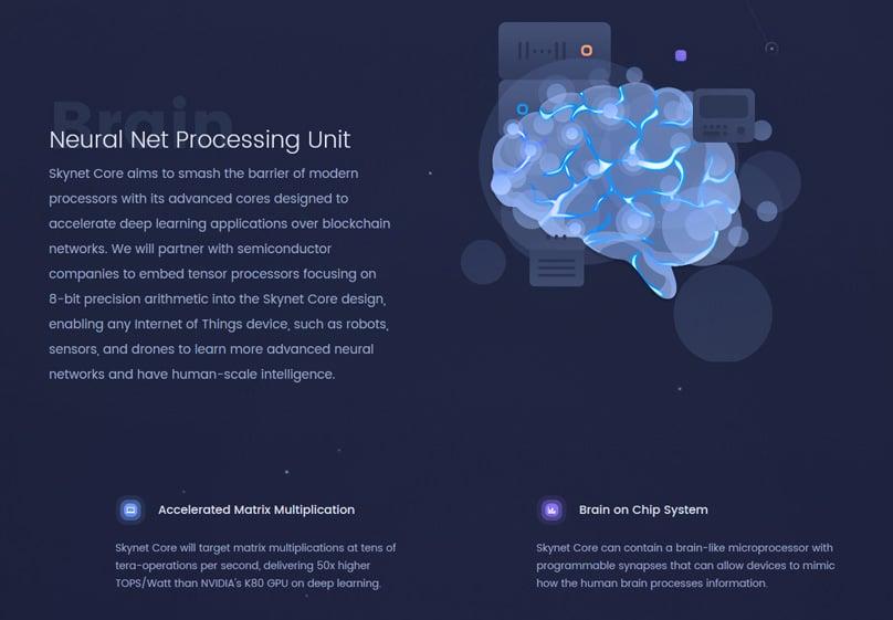 Neural Net Processing Unit